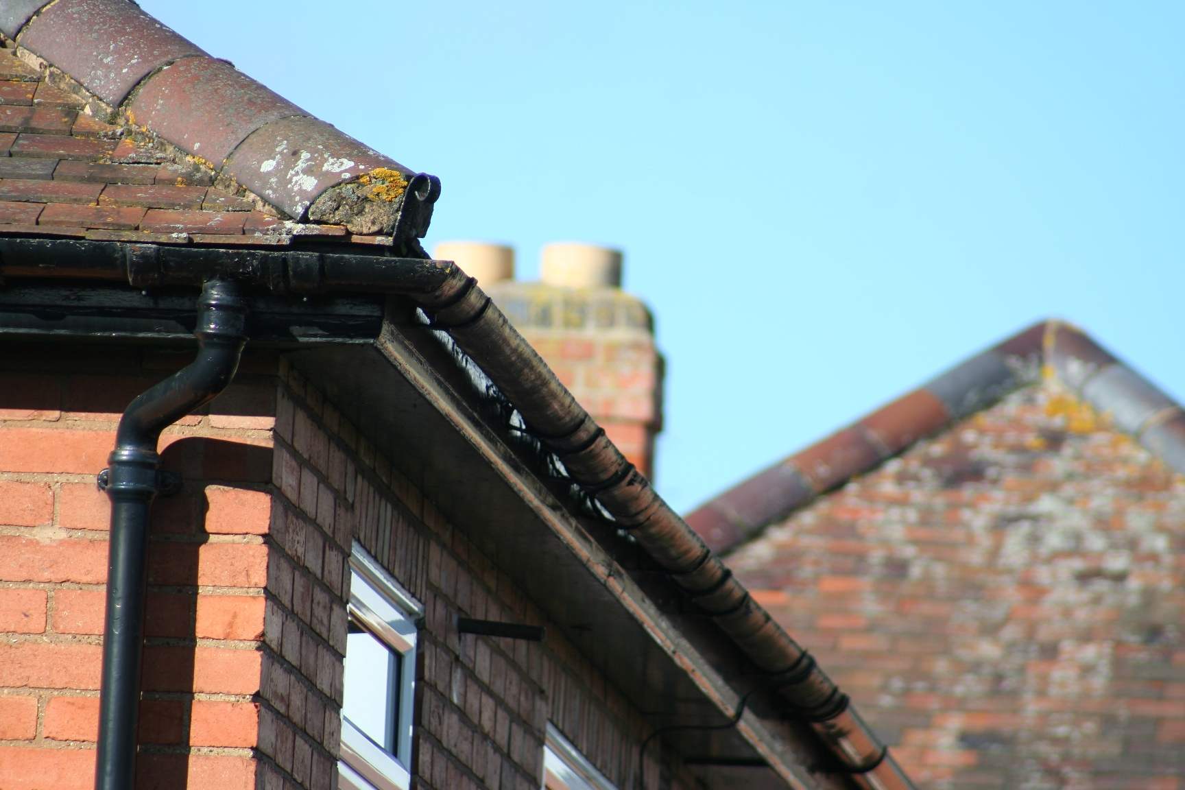 Gutters fascias in new upvc for New gutters
